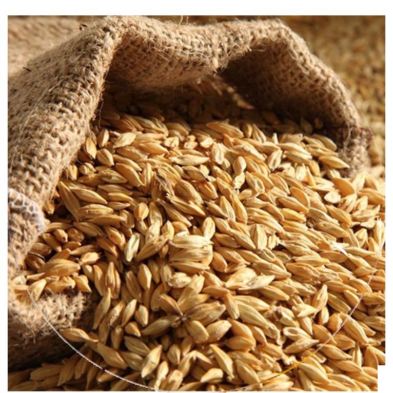 Combavipor - Siloz cereale pret cel mai bun
